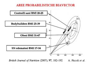 aree probabilistiche biavector