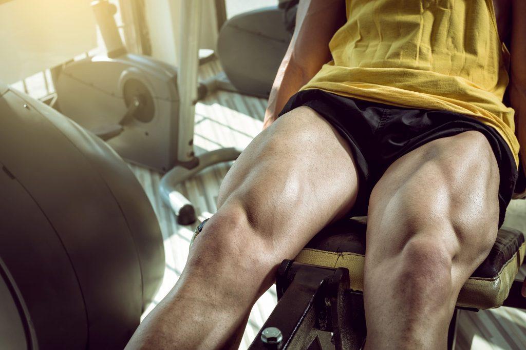 quadricipiti allenamento bodybuilding